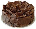 Chocolate Truffle Cake (Avari)- 4Lbs
