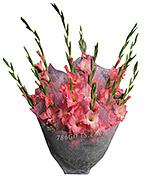 Pink Glade Bouquet
