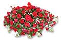 Flower Basket- Small